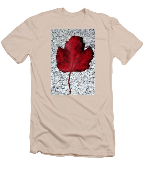 Autum Maple Leaf 1 Men's T-Shirt (Athletic Fit)