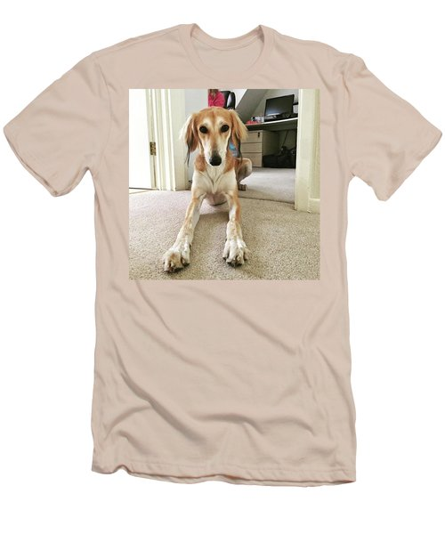 Ava On Her First Birthday #saluki Men's T-Shirt (Athletic Fit)