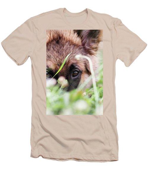 Bashful Men's T-Shirt (Slim Fit) by Stephanie Frey