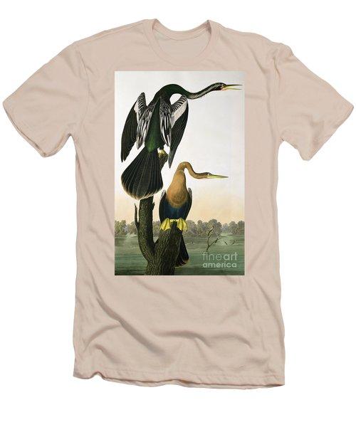 Black Billed Darter Men's T-Shirt (Athletic Fit)