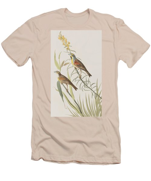 Black-throated Bunting Men's T-Shirt (Athletic Fit)