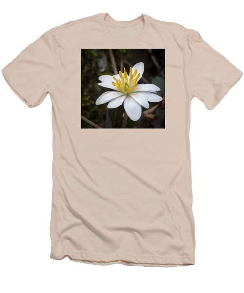 Men's T-Shirt (Slim Fit) featuring the photograph Bloodroot by Tyson and Kathy Smith