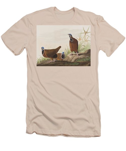 Blue Headed Pigeon Men's T-Shirt (Slim Fit) by John James Audubon