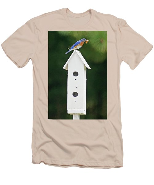 Bluebird Dad Men's T-Shirt (Athletic Fit)