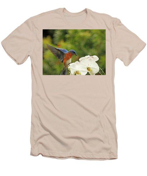 Bluebird Landing On Orchid Men's T-Shirt (Slim Fit) by Luana K Perez