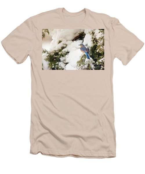 Men's T-Shirt (Slim Fit) featuring the photograph Bluebird On Snow-laden Cedar by Robert Frederick