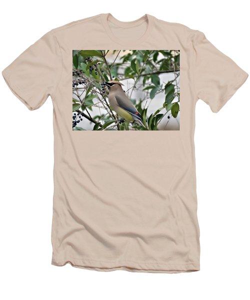 Cedar Waxwing 3 Men's T-Shirt (Slim Fit) by Kathy Long