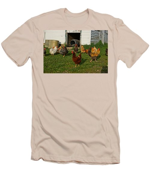 Chicken Scratch Men's T-Shirt (Slim Fit) by Steven Clipperton