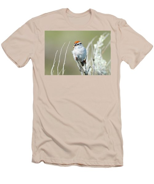 Men's T-Shirt (Slim Fit) featuring the photograph Chipping Sparrow by Mike Dawson