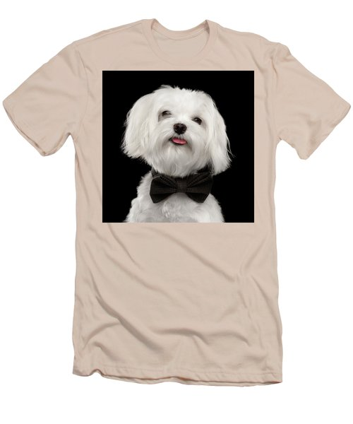 Closeup Portrait Of Happy White Maltese Dog With Bow Looking In Camera Isolated On Black Background Men's T-Shirt (Slim Fit) by Sergey Taran