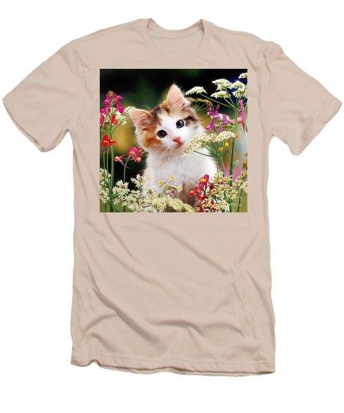 Cow Parsley Cat Men's T-Shirt (Athletic Fit)