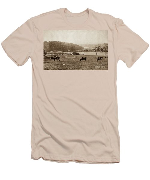 Men's T-Shirt (Athletic Fit) featuring the photograph Cows On Baker Field by Cole Thompson
