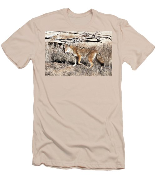 Coyote Men's T-Shirt (Athletic Fit)