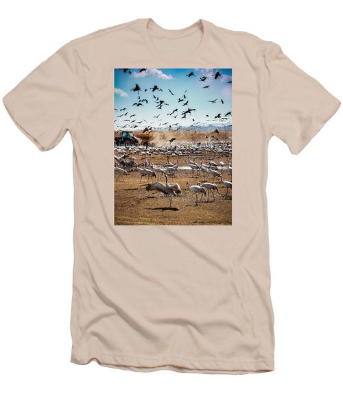 Cranes Feeding Men's T-Shirt (Athletic Fit)