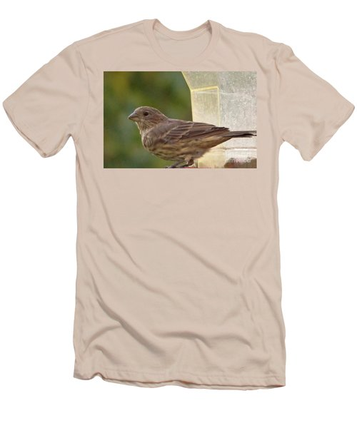 Crossbill Female Portrait      September    Indiana Men's T-Shirt (Slim Fit) by Rory Cubel