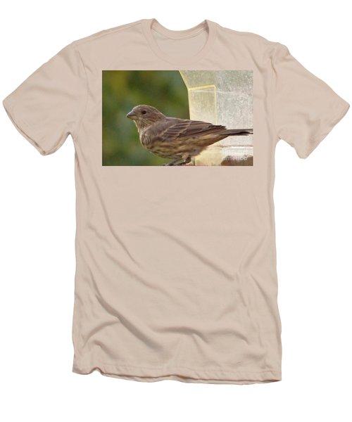 Crossbill Female Portrait      September    Indiana Men's T-Shirt (Athletic Fit)