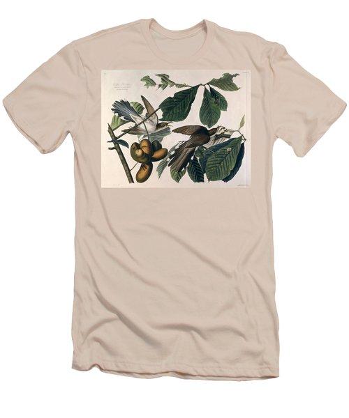 Cuckoo Men's T-Shirt (Slim Fit) by John James Audubon
