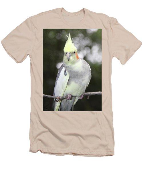 Curious Cockatiel Men's T-Shirt (Slim Fit) by Inspirational Photo Creations Audrey Woods