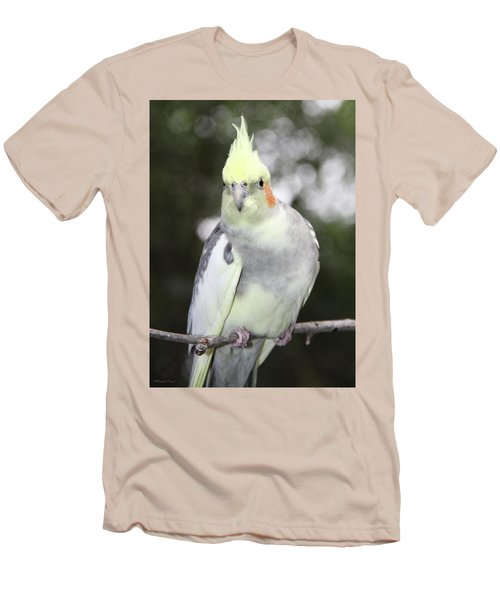Curious Cockatiel Men's T-Shirt (Athletic Fit)