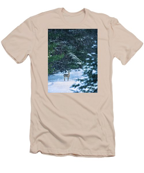 Deer In A Snowy Glade Men's T-Shirt (Athletic Fit)