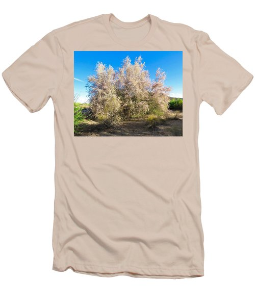 Desert Ironwood Tree In Bloom - Early Morning Men's T-Shirt (Athletic Fit)