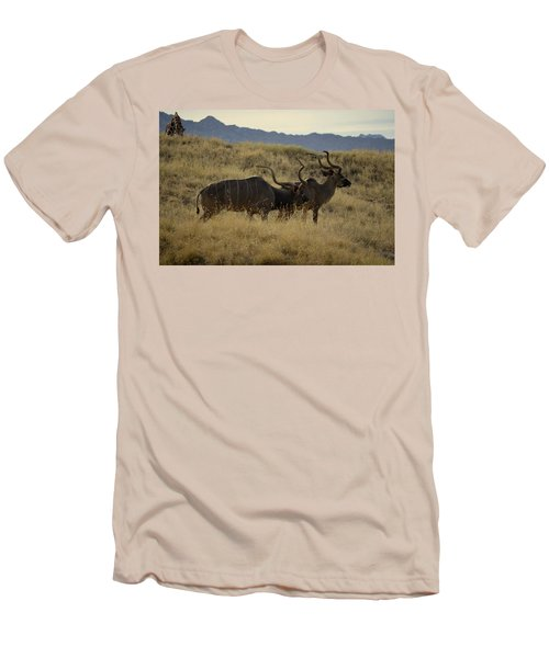 Desert Palm Landscape Men's T-Shirt (Slim Fit) by Guy Hoffman