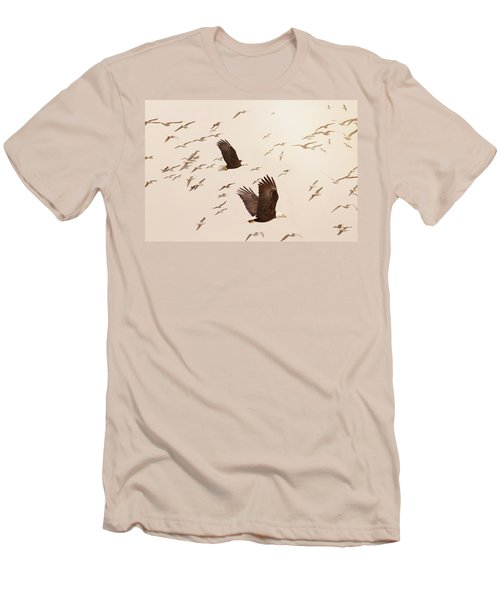 Eagles And Flock Of Seagulls Men's T-Shirt (Slim Fit) by Peggy Collins