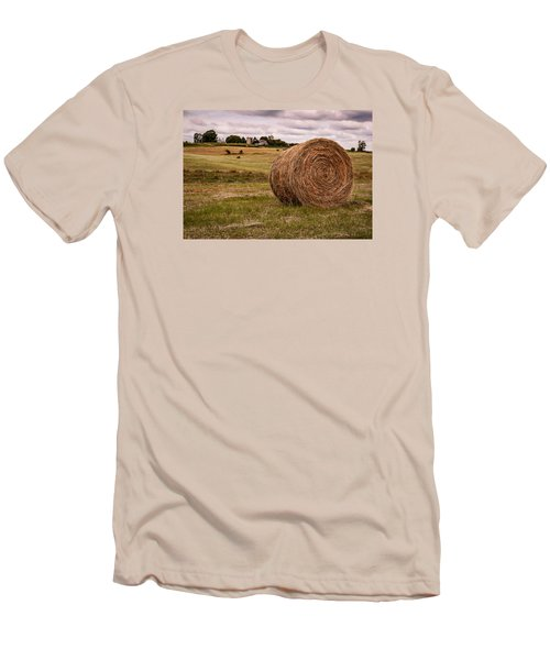 Early Autumn Men's T-Shirt (Slim Fit) by Wayne King