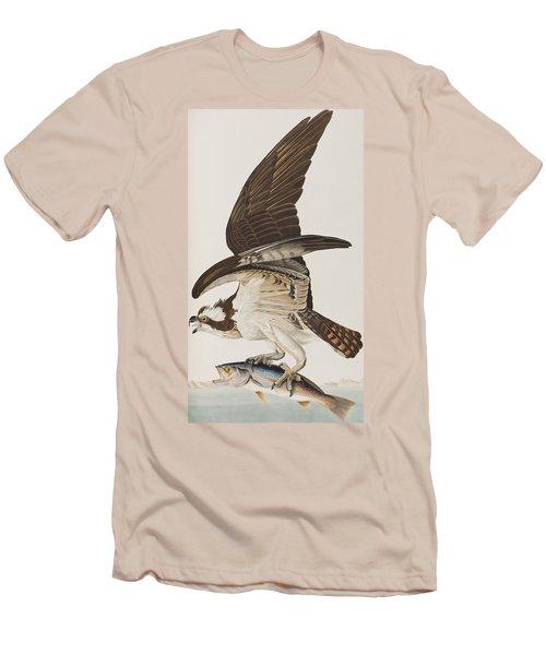 Fish Hawk Or Osprey Men's T-Shirt (Athletic Fit)