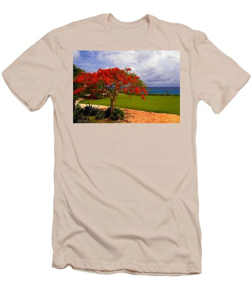 Flamboyant Tree In Grand Cayman Men's T-Shirt (Slim Fit) by Marie Hicks