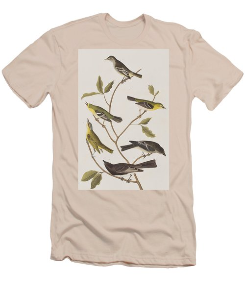 Fly Catchers Men's T-Shirt (Athletic Fit)