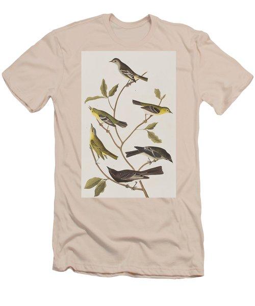 Fly Catchers Men's T-Shirt (Slim Fit) by John James Audubon