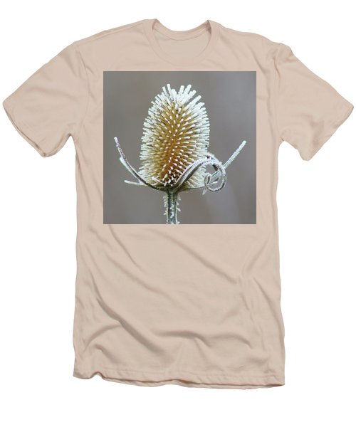 Frosted Teasel Men's T-Shirt (Slim Fit) by Nikolyn McDonald