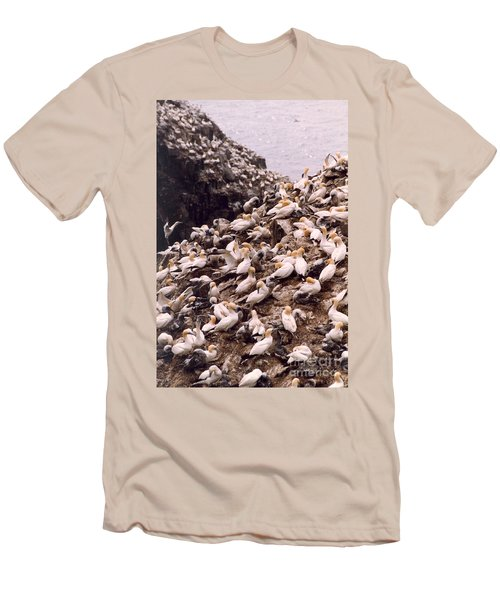 Gannet Cliffs Men's T-Shirt (Athletic Fit)