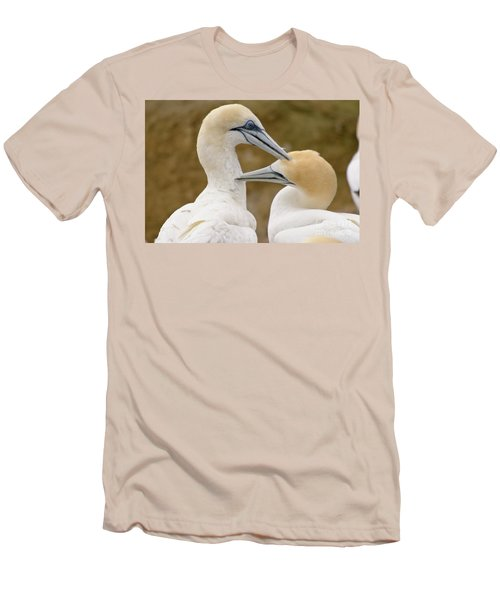 Men's T-Shirt (Slim Fit) featuring the photograph Gannet Pair 1 by Werner Padarin