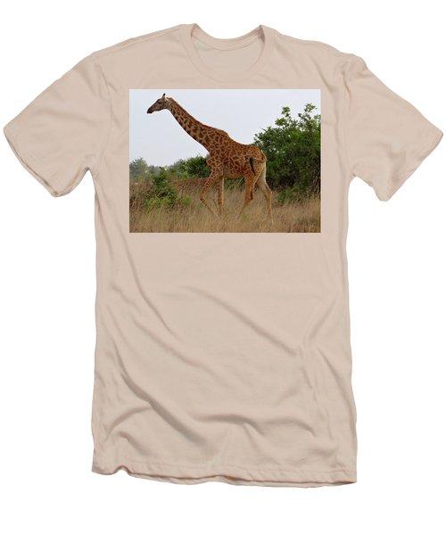 Giraffes On A Walk Men's T-Shirt (Athletic Fit)