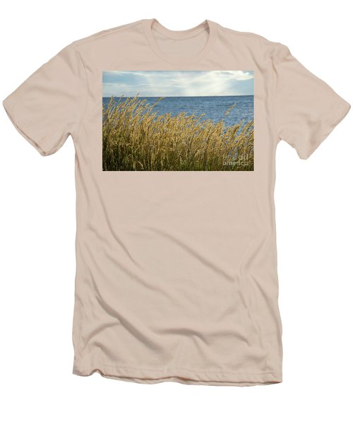 Glowing Grass By The Coast Men's T-Shirt (Slim Fit) by Kennerth and Birgitta Kullman