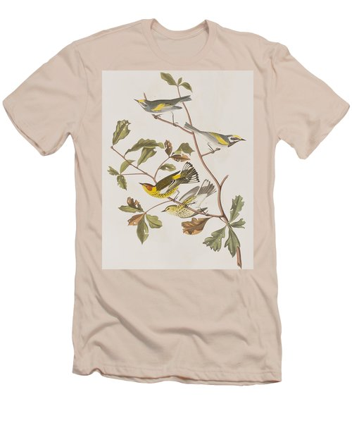 Golden Winged Warbler Or Cape May Warbler Men's T-Shirt (Athletic Fit)