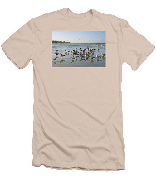 Gulls And Terns On The Sanbar At Lowdermilk Park Beach Men's T-Shirt (Slim Fit) by Robb Stan
