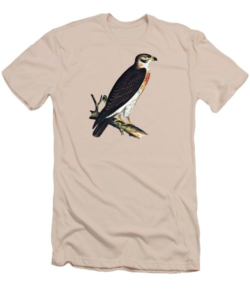 Hawk Swainsons Hawk Men's T-Shirt (Athletic Fit)