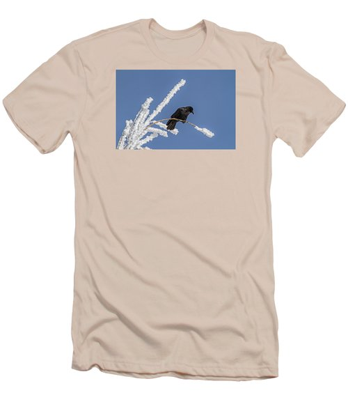 Hoarfrost And The Crow Men's T-Shirt (Athletic Fit)