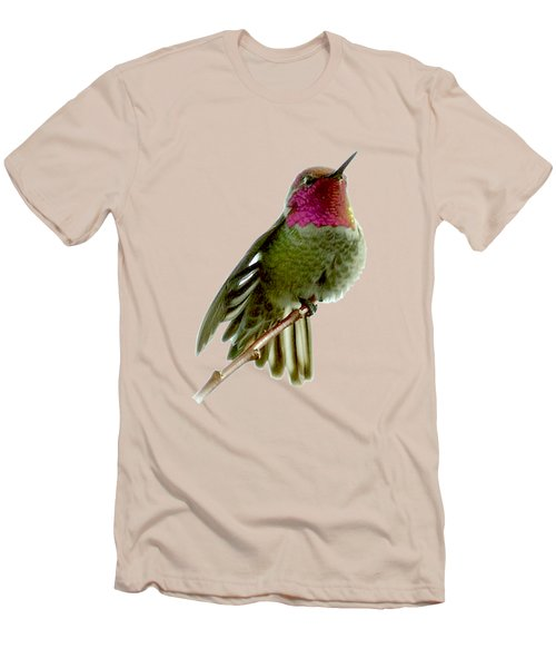 Hummingbird Portrait T1 Men's T-Shirt (Athletic Fit)