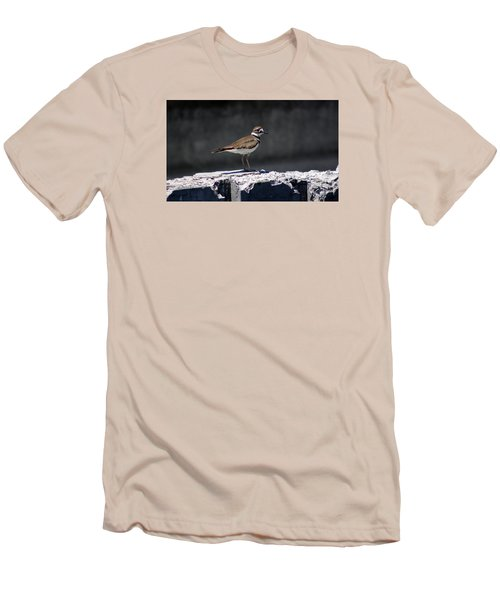 Killdeer Men's T-Shirt (Slim Fit) by M Images Fine Art Photography and Artwork