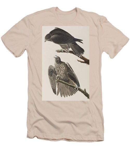 Labrador Falcon Men's T-Shirt (Slim Fit) by John James Audubon