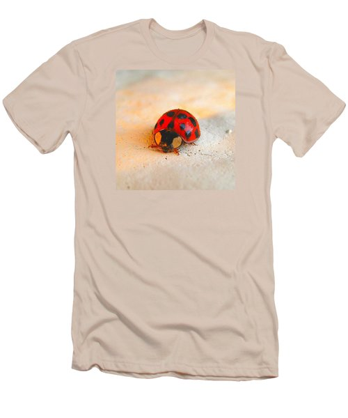Men's T-Shirt (Slim Fit) featuring the photograph Lady Bug 2 by John King