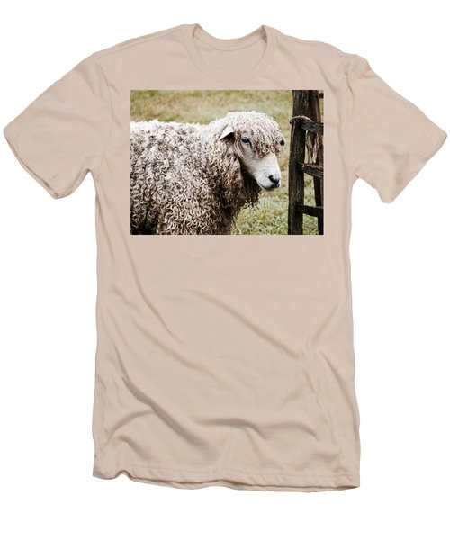 Leicester Longwool Men's T-Shirt (Athletic Fit)