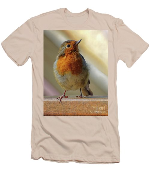 Little Robin Redbreast Men's T-Shirt (Athletic Fit)