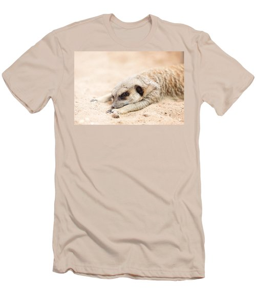 Long Day In Meerkat Village Men's T-Shirt (Athletic Fit)