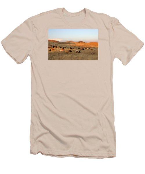 Longhorns Men's T-Shirt (Slim Fit) by Diane Bohna