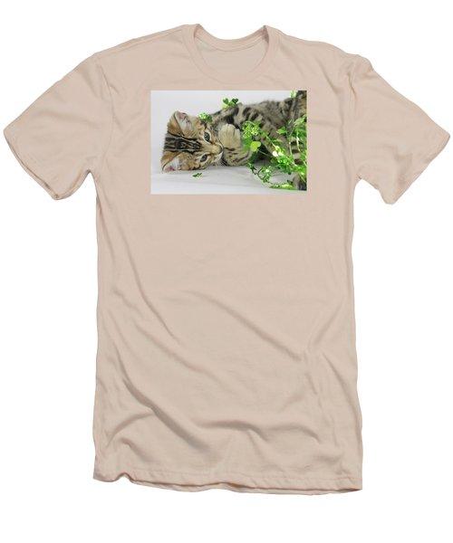 Lucky Kitten Men's T-Shirt (Slim Fit) by Shoal Hollingsworth